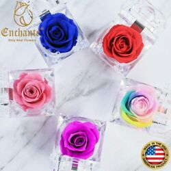 REAL Preserved Forever Rose Ring Box Birthday Anniversary Valentine#x27;s day Gift $8.99