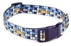 New NWT Zack amp; Zoey Dog Collar Electric Charged Blue Orange 5 8quot; x 14 20quot; Medium $9.99