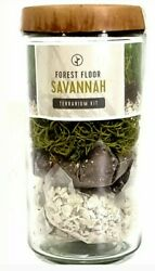 Forest Floor Savannah Terrarium Kit Moss amp; Sedum Glass Ecosystem $12.99