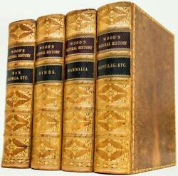 1871 Wood#x27;s Illustrated Natural History Fine Leather Bindings Illustrated Quarto $1200.00