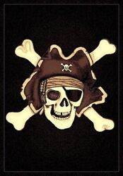 6' X 8' PIRATE WITH CROSSBONES HIGH QUALITY DENSITY AREA RUG KIDS ROOM MODERN