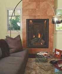 Empire's Direct Vent Gas Forest Hills Portrait Design Traditional Fireplace