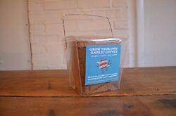 Grow Your Own Garlic Chives Mini-greenhouse Kit: Organic Peat-free And Easy To