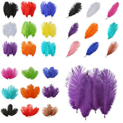 Good Quality Ostrich Feathers DIY Widding supplies Sewing colorful Millinery