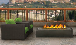 Napoleon-Linear Patioflame Outdoor Gas Fireplace **Free Shipping**