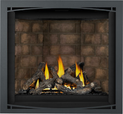 Napoleon Altitude AX36 Direct Vent Fireplace LPNG 35000 BTUs Night Light
