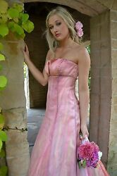 NEW Vera Wang Wedding dress formal gown 100% Silk Blush Pink white