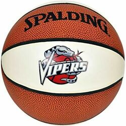 Spalding NBA Rio Grande Vipers Basketball mini size $12.99