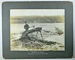 1900 era WASHING GOLD Photograph Man at Sluice GOLD MINING PANNING Vancouver BC $45.00