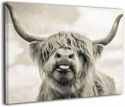 Freedom Highland Cow Pictures Canvas Wall Art $21.59