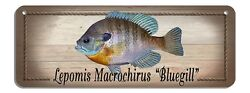 Bluegill Rustic Wall Sign Plaque Gifts Men Sea Fishing Fishermen Fish Metal $11.99