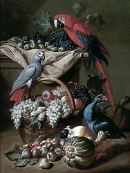 STILL LIFE PARROT grape fruit J. Kerckhoven Tile Mural Backsplash Marble Ceramic