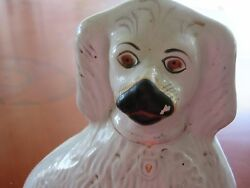 Antique Staffordshire Spaniel white with black nose copper eyes 10