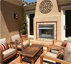 Napoleon Outdoor Gas Fireplace GSS36N Stainless Steel Fire pit NG Propane