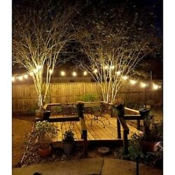 IlluminFX FLEX Lighting: PL16 Outdoor Patio Lights 48' String with 24 Lamps
