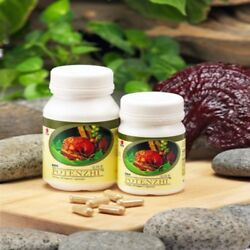 BIG STOCK CLEARANCE ! 60 Bottle DXN Potenzhi ( 90 Capsule ) with Ganoderma