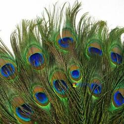 20pcs Real Natural Peacock Tail Eyes Feathers 8-12 Inches  about 23-30cm US