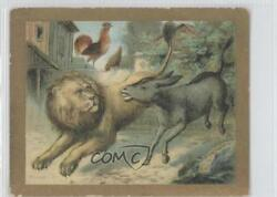1910 Turkish Trophies Fable Series Tobacco T57 The Donkey Cock And Lion Card 9at