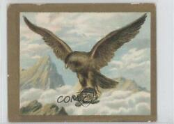 1910 Turkish Trophies Fable Series Tobacco T57 The Tortoise And Eagle Card 9at