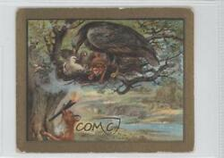 1910 Turkish Trophies Fable Series Tobacco T57 The Eagle And Fox Card 9at