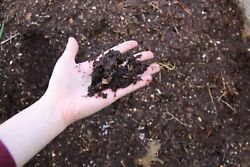 🌲FRESH RICH FOREST SOIL : 20 lbs. Fertilizer Organic Amendment Humus Compost $29.50