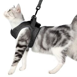 Cationic Cat Harness and Leash Set for Walking 360° wrapHarness Cushioning $13.00