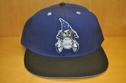 Vintage mid 90s fitted Ft Wayne Wizards fitted Proline Minor League hat 7 1 2 $22.00