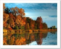 Hdr Autumn Forest On Art Print Canvas Print. Poster Wall Art Home Decor R $1.99