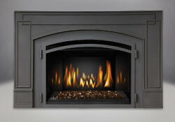 Napoleon Infrared™ IR3GSB 24000 btu Gas Fireplace Insert w Cast Iron Surround