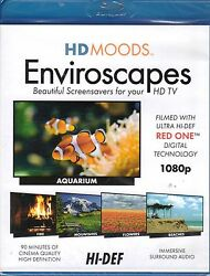 HD MOODS Enviroscapes: VIRTUAL HOLIDAY FIREPLACE MOUNTAINS BEACH SCENES