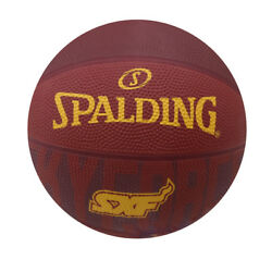 Spalding Basketball Size 3 Skyforce Monochromatic $11.99
