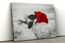 Red rose black and white painting Framed bedroom Canvas Print Wall Art pp146 GBP 30.35