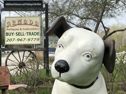 """RARE Vintage 40's RCA Victor Nipper Dog Composition Store Display 39"""" Tall"""