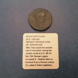 Aelia Capitolina Ancient Roman Bronze Coin with She Wolf Jerusalem AD 138 - 280