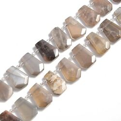 Black Moonstone Graduated Faceted Trapezoid Beads 15x20 to 18x27mm 15.5