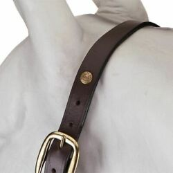Henri De Rivel Advantage Leather Halter-Havana
