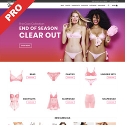 LINGERIE STORE  Automated Dropshipping Website  Profitable Business For Sale $129.00