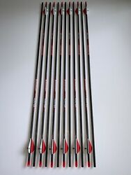 Bloodsport Hunter 400 Arrows 31 w 2 in. Vanes & Inserts - 12 Pack $45.00