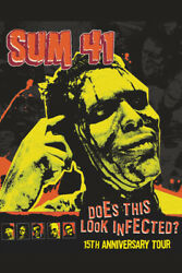 Sum 41 Does This Look Infected Pop Rock Band Art Wall Room Poster POSTER 24x36 $18.99