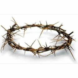4 6quot; Authentic Christian Jesus Crown Of Thorns From The Holy Land of Bethlehem $12.99