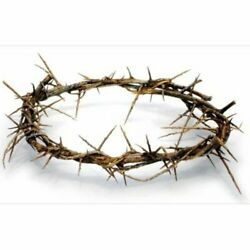 10 12quot; Authentic Christian Jesus Crown Of Thorns From The Holy Land of Bethlehem $22.99
