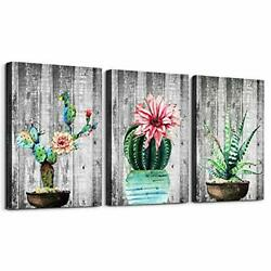 Green plants cactus potted Picture Wall Art for living room Canvas Prints Art... $40.58