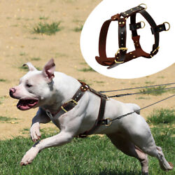 Best Genuine Leather Dog Harness Large Breed Heavy Duty Rottweiler Pitbull Boxer $39.99
