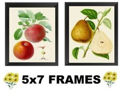 💗 5x7 Red Apple amp; Pear Pictures Fruit Kitchen Decor Wall Hangings $13.99