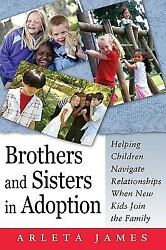 Brothers and Sisters in Adoption : Helping Children Navigate Relationships When