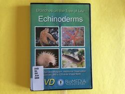 ECHINODERMS BRANCHES ON THE TREE OF LIFE DVD FREE SHIP
