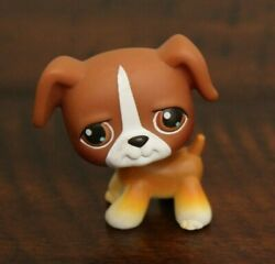 Littlest Pet Shop BOXER DOG # 25 Brown White Pup Puppy 2004 Retired LPS in USA