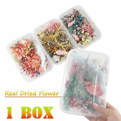 1Box Real Dried Flowers For DIY Art Craft Epoxy Resin Pendant Jewellery Making $3.72