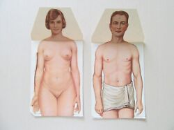 Paper Anatomical Manikins The Modern Home Physician Supplement ca. 1930 $60.00