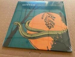 NEW SUPER RARE Guster Ganging Up on the Sun ORANGE Vinyl 2xLP $149.99